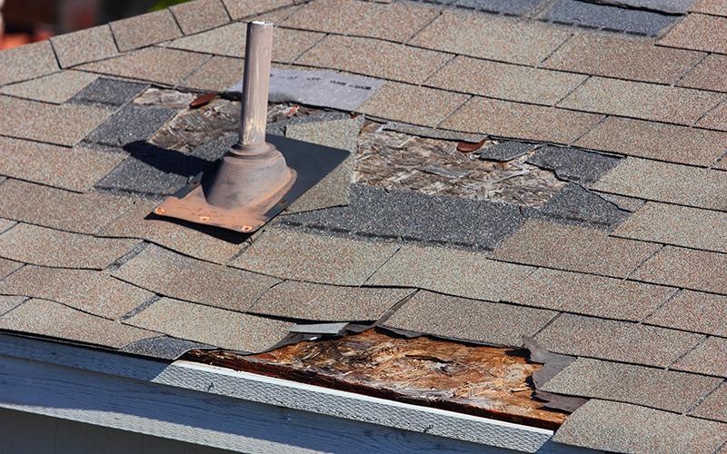 revêtement du toit